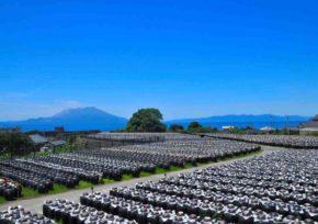 福山の黒酢壺畑