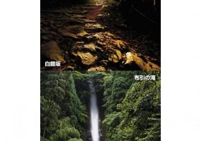 白銀坂&布引の滝