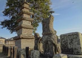 大隅国分寺跡