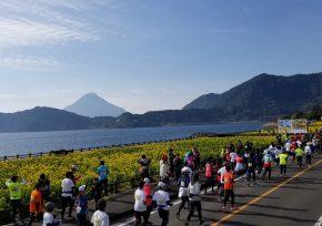いぶすき菜の花マラソン